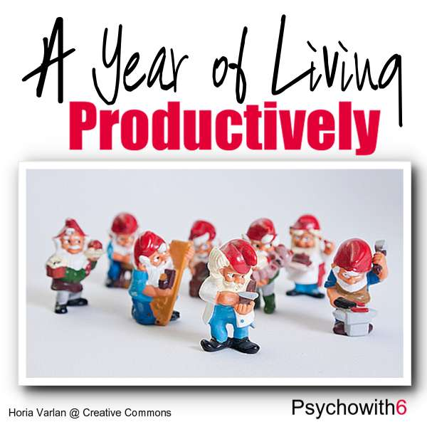A Year of Living Productively