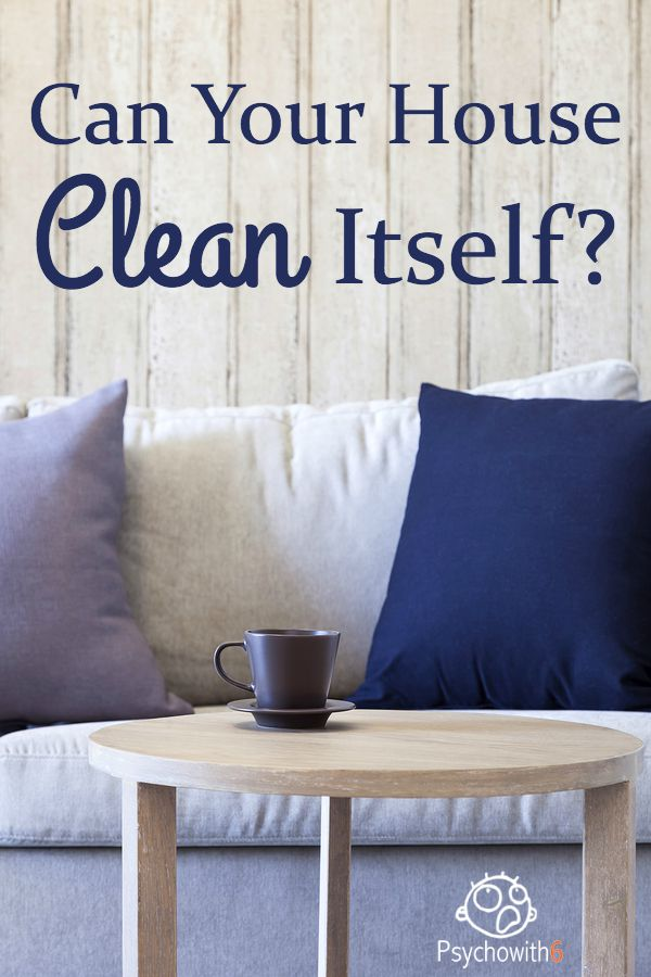 Can Your House Clean Itself?