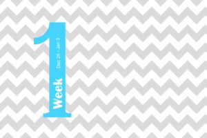 Project Life 2015 Weekly Cards Free Printable